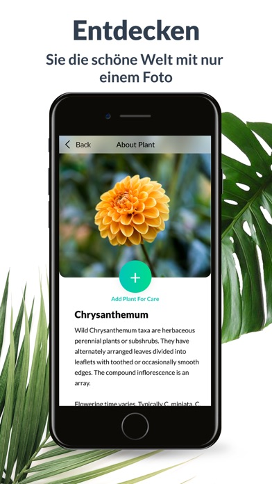 messages.download Plant Identification Lite software