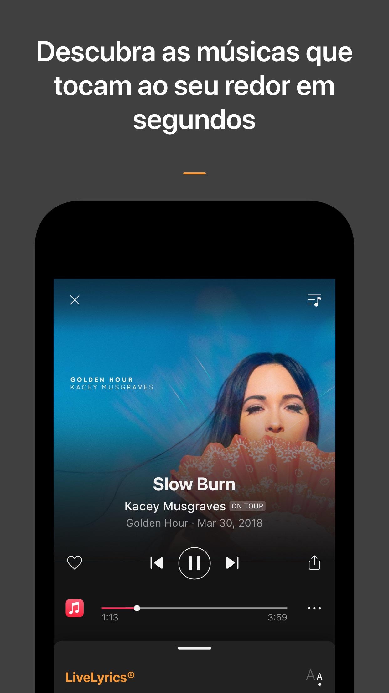 Screenshot do app SoundHound∞