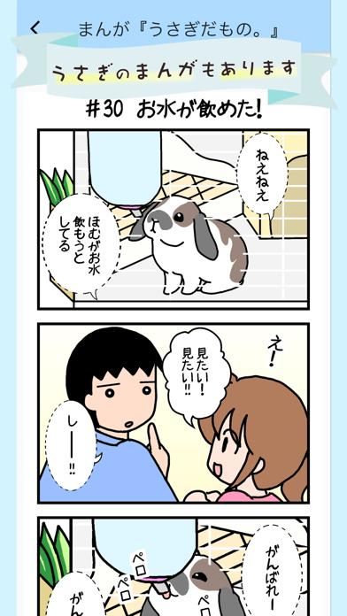 うさぎ広場紹介画像5