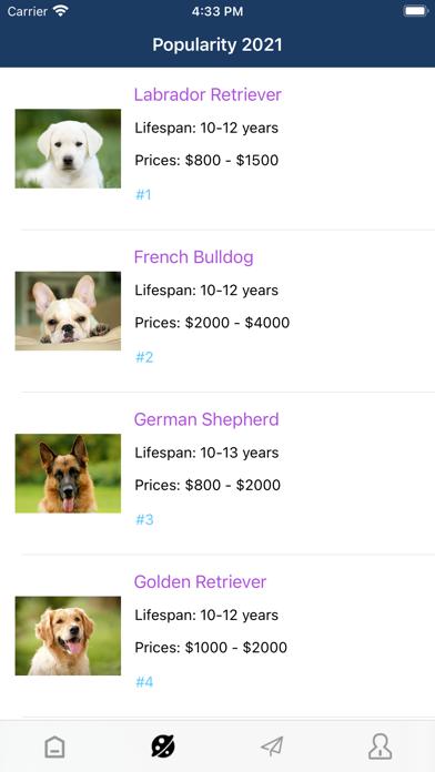 dogFind screenshot 4