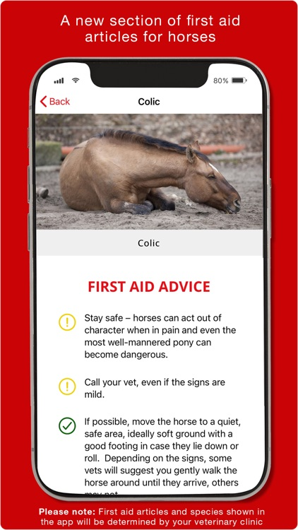 First Aid for Pets screenshot-5