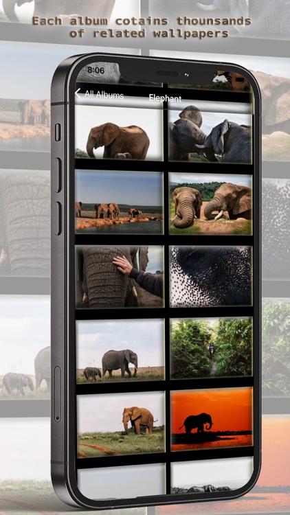 10000 Animal Wallpapers