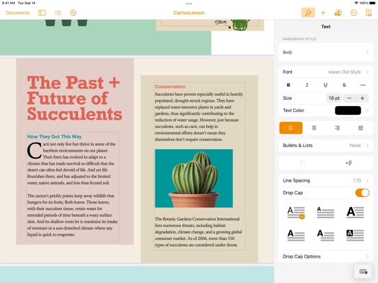 Pages iPad app afbeelding 8