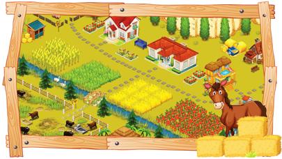 HomeLand Farm紹介画像3
