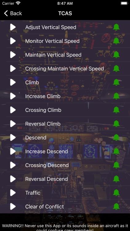 737 Voice - Aural Warnings screenshot-3