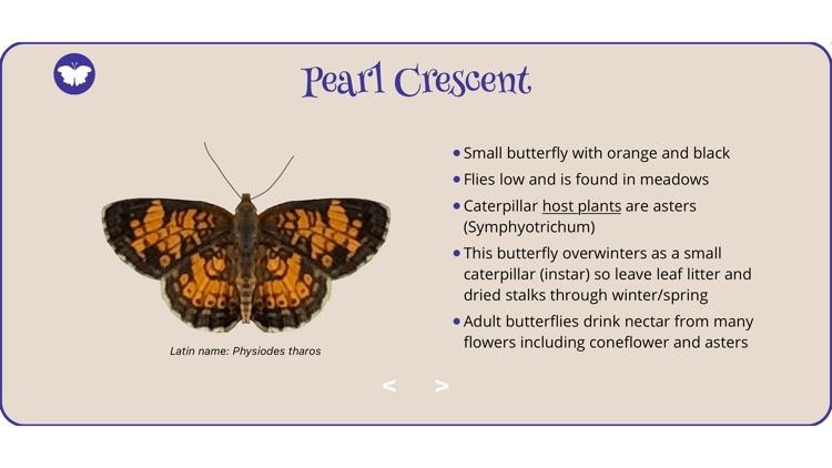 World of Butterflies screenshot-4