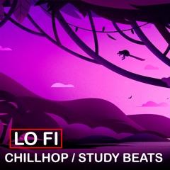 LoFi Chill Hop Study Beats