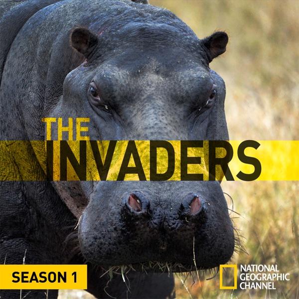 Watch The Invaders Episodes on Nat Geo WILD   Season 1 (2011