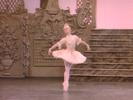 The Nutcracker: Dance of the Sugar Plum Fairy (Extract) - Royal Ballet, Covent Garden