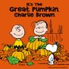 Peanuts' Charlie Brown - It's the Great Pumpkin, Charlie Brown artwork