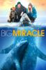 Big Miracle - Ken Kwapis
