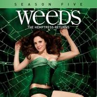 Weeds, Season 5 (iTunes)