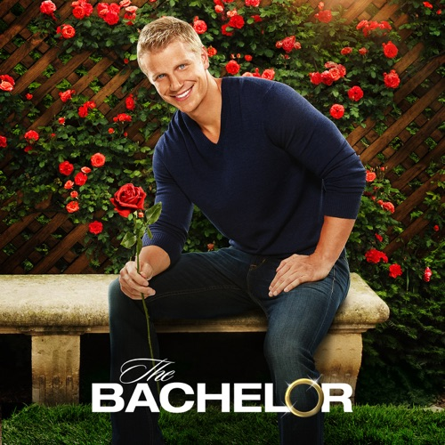 The Bachelor, Season 17 poster