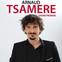 Télécharger Arnaud Tsamere, chose promise Episode 1
