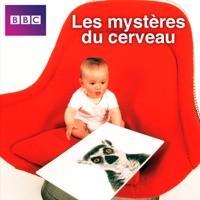Télécharger Les mystères du cerveau Episode 1