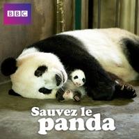 Télécharger Sauvez le panda Episode 1