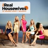 The Real Housewives of Orange County, Season 6 wiki, synopsis