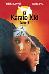 Karate Kid III (Subtitulada)