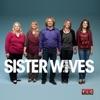 Sister Wives, Season 4 wiki, synopsis