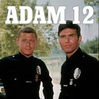 Télécharger Adam 12, Season 1 Episode 5