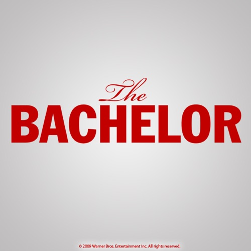 The Bachelor, Season 13 poster