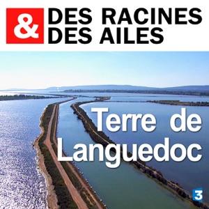 Terre de Languedoc - Episode 1