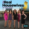 The Real Housewives of New Jersey, Season 1 wiki, synopsis
