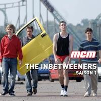 Télécharger The Inbetweeners, Saison 1 Episode 6