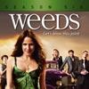Weeds, Season 6 - Synopsis and Reviews