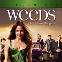 Weeds, Season 6 (iTunes)