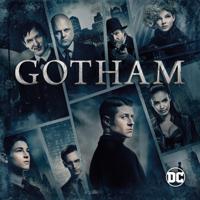 Gotham - Gotham: Staffel 1+2 artwork