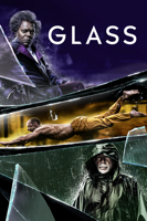 M. Night Shyamalan - Glass artwork