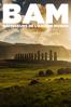 BAM : Bâtisseurs de l'ancien monde - Patrice Pouillard