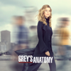 Grey's Anatomy - Snowblind  artwork