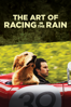 The Art of Racing in the Rain - Simon Curtis