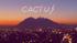 Cactus - Gustavo Cerati