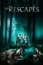 Affiche du film Les rescapés