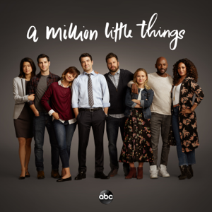 A Million Little Things, Season 1 Synopsis, Reviews
