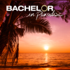 Bachelor in Paradise - 602B  artwork