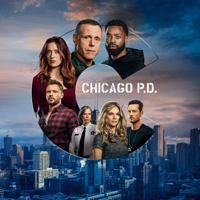 Chicago PD - Signs of Violence artwork