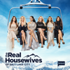 The Real Housewives of Salt Lake City - Everybody Needs a Switzerland  artwork