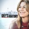 Grey's Anatomy - Paralysé  artwork