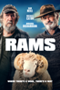 Jeremy Sims - Rams (2019)  artwork