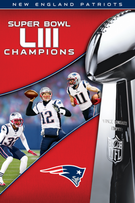 Unknown - NFL Super Bowl LIII Champions New England Patriots  artwork