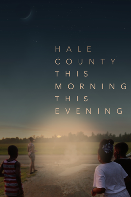 RaMell Ross - Hale County This Morning, This Evening  artwork