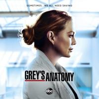 Grey's Anatomy, Season 17 - Grey's Anatomy, Season 17 Reviews