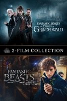 Fantastic Beasts 2-Film Collection (iTunes)