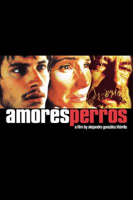 Alejandro González Iñárritu - Amours chiennes (Amores Perros) illustration