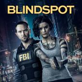 Blindspot, Saison 4 (VOST)