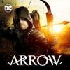 Arrow - Longbow Hunters artwork